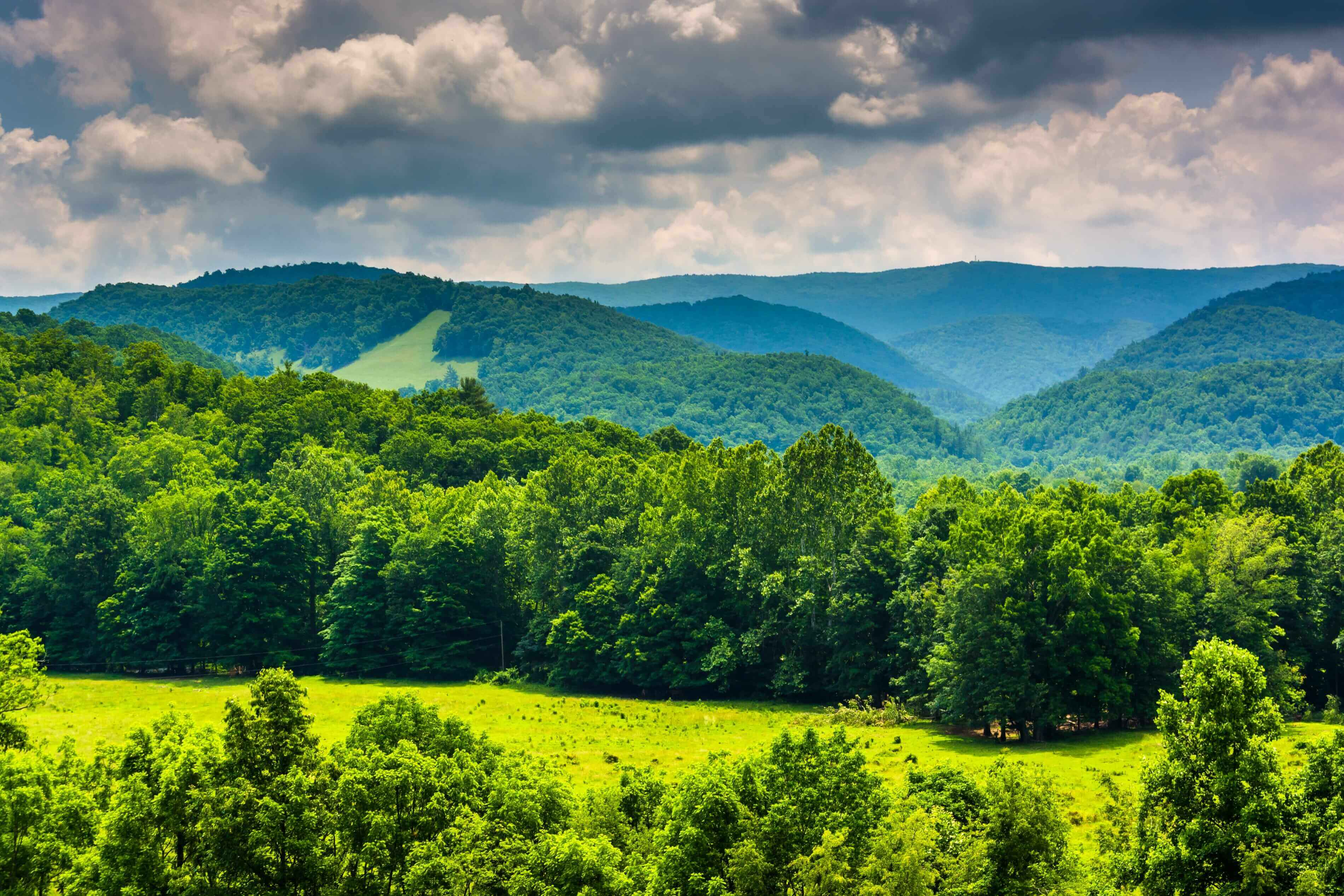 Top Investment Advisors In West Virginia and Pennsylvania